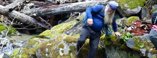 Sardine Creek – NW Canyoneering