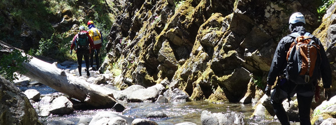 Parkett Creek Canyoneer 6-14-15